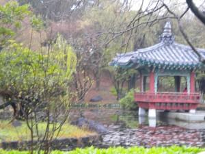 Korean Traditional Garden